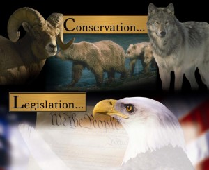 Conservation - Legislation